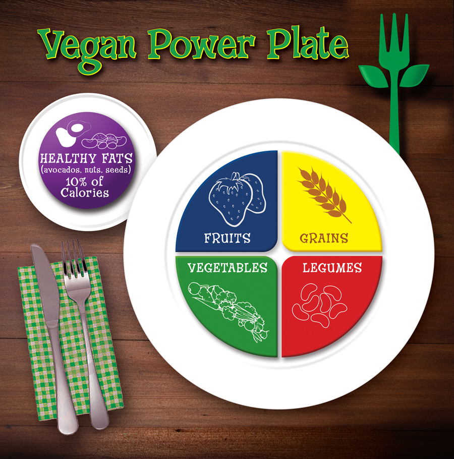 A healthy plant-based diet is easier than you think when you follow this healthy vegan power plate for optimal nutrition. (ordinaryvegan.net)