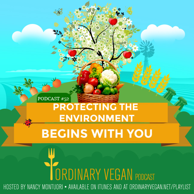 You don't have to feel helpless about the future of the planet. Because how to protect the environment begins with you. And there are positive steps we can do to tackle climate change right now. (#vegan) ordinaryvegan.net